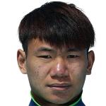 Feng Gang