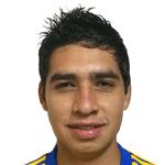 V. Alvarado