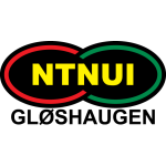 NTNUI logo