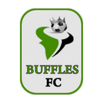 Buffles de Borgou FC