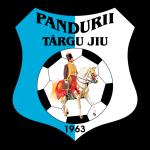 Pandurii Târgu Jiu logo