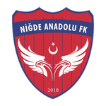 Niğde Anadolu FK AŞ