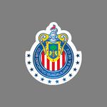 CD Guadalajara Under 17