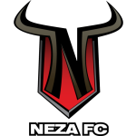 Toros Neza