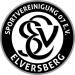 SV 07 Elversberg