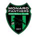 Monaro Panthers FC