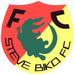 Steve Biko FC