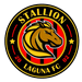 Stallion Sta. Lucia FC