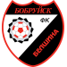FC Belshina Bobruisk