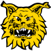 Tampereen Ilves