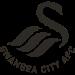 Swansea City AFC