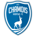 Chamois Niortais Football Club