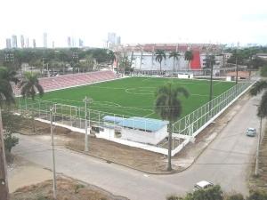 Estadio Luis Ernesto Cascarita Tapia